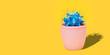 Leinwanddruck Bild - Cactus Art Fashion Design with copy space. Cacti in pink ceramic pot Minimal summer still life concept. Blue neon Mood on orange background. Trendy Bright Color.