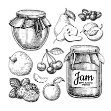 Fruit Jam Glass Jar Vector Dra...