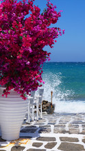 Photo Of Beautiful Bougainvillea Flower With Awsome Colors In Picturesque Greek Island With Deep Blue Waves, Naousa, Paros Island, Cyclades, Greece