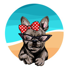 Vector Portrait Of French Bulldog Dog Wearing Sunglasses And Retro Bow. Summer Fashion Illustration. Vacation, Sea, Beach, Ocean. Hand Drawn Pet Portait. Poster, T-shirt Print, Holiday, Summertime.