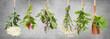 canvas print picture - Frische Pflanzen für Tee