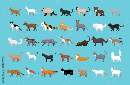 Leinwand Poster Various Cats Side View Cartoon Vector Illustration