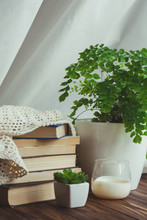 A Stack Of Books And A Green Plant On A Table With Candle. Reading Time Concept. Moody Fall Morning. Interior