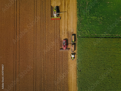 Fotomural Agriculture in action
