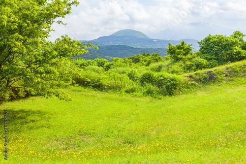 Poster Lime groen 小室山の恐竜広場から大室山を望む、静岡県伊東市にて