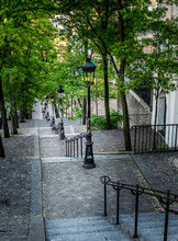 Rue Foyatier Stairs In Montmar...