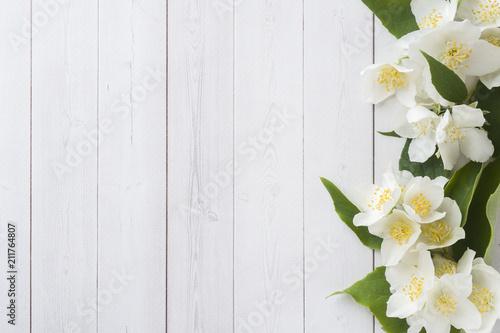 Photo  Jasmine flowers on a light background