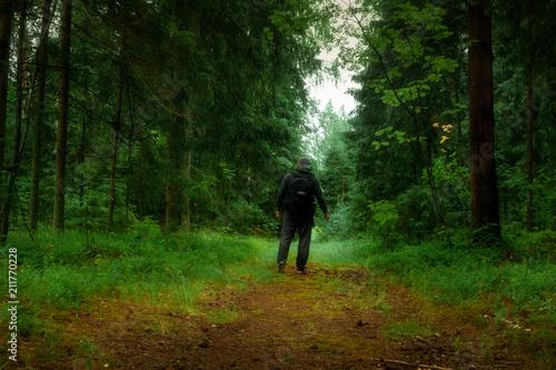 Acrylic Prints Horseback riding forest walk