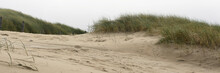 View On The Dunes At The Westc...