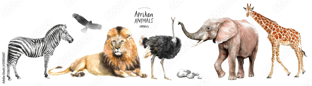 Fototapety, obrazy: watercolor illustration of African animals: zebra, lion, ostrich, elephant, giraffe, eagle, southern savannah tree and stones, a set of drawings from the hands of animals in the zoo
