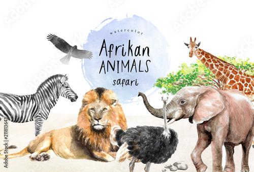 Fotomural  watercolor illustration of African animals: zebra, lion, ostrich, elephant, gira