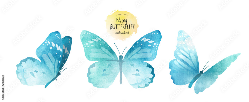 Fototapeta watercolor illustrations of cute blue butterflies, drawings by hand, isolated on white background