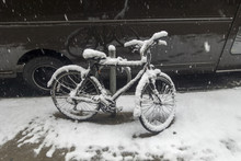 Urban Dilvery Bike Covered Wit...