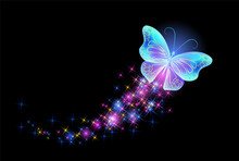 Butterfly With Glowing Firework