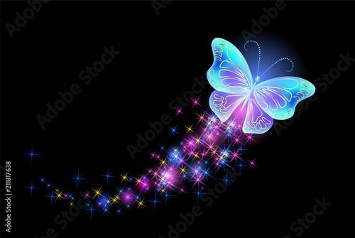 Fotografie, Obraz  Butterfly with glowing firework
