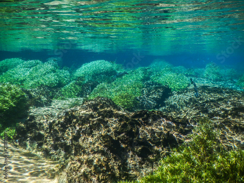Fotografia  Practicing diving and snorkeling, mysterious lagoon, beautiful lagoon of transpa