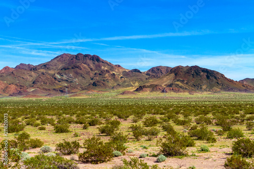 Mountain view in the Mojave Desert in California Canvas Print