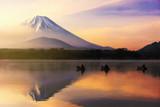 Fujisan o wschodzie słońca w jeziorze Shoji - 211827019