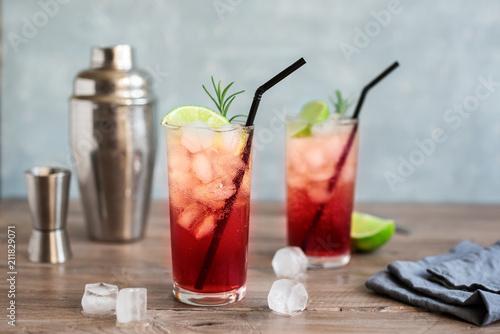 Valokuva Sloe Gin Fizz Cocktail