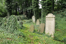 Some Headstones Covered With I...