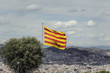 Flag of Catalunya with Barcelona city landscape