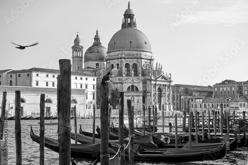 Gondolas and Santa Maria della Salute church in Venice