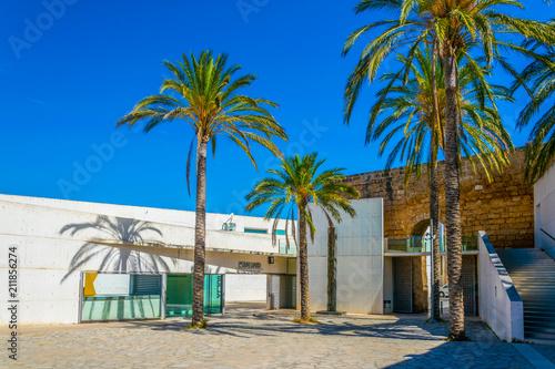 Foto op Canvas Strand An old fortress hosting Es Baluard art museum in Palma de Mallorca, Spain