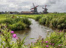 Windmills In Zaanse Schans, Za...