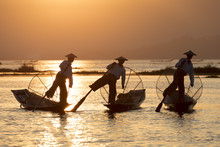 Three Fishermen Row With One Leg At Sunset On Inle Lake, Shan State