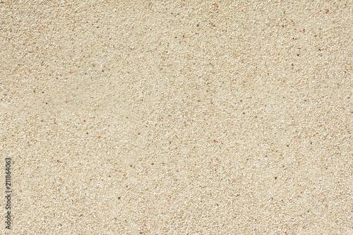 Fototapeta サンゴ砂