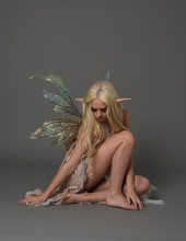Full Length Portrait A Blonde Girl Wearing Fairy Costume. Seated Pose, On Grey Studio Background.