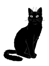 Cute Realistic Cat Sitting. Vector Illustration Of Kitty Looking Up. Grey Lines, Black Figure On White Background. Element For Your Design, Print, Sticker. Fluffy Black Cat In Simple Sketch Style.