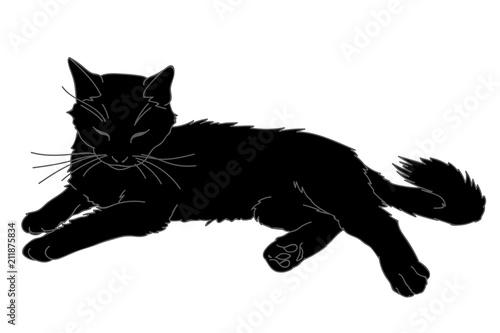 Carta da parati Cute realistic cat laying