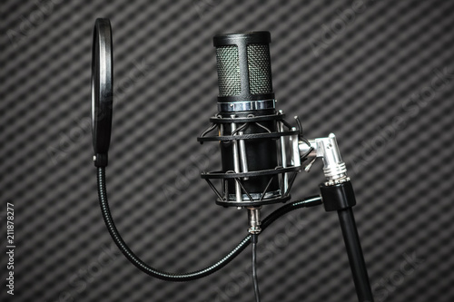 Valokuvatapetti Professional condenser studio microphone.