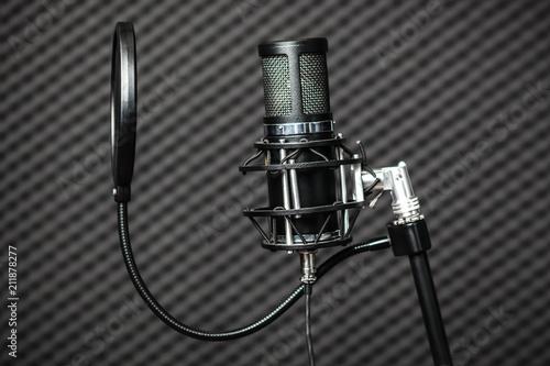Photo  Professional condenser studio microphone.