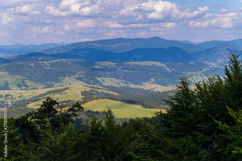 Keuken foto achterwand Zwart The tops of tall coniferous trees against the backdrop of a beautiful landscape with small forest clearings and huge mountains
