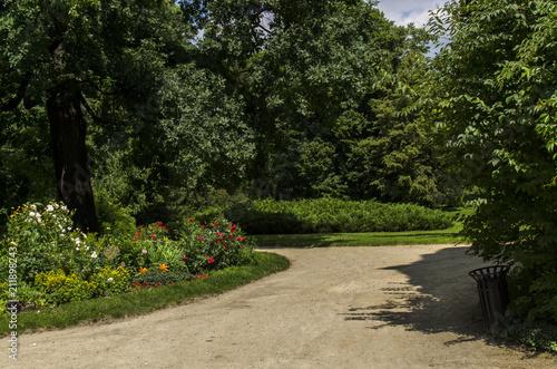 Obraz park  - fototapety do salonu