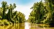 Romania, Danube Delta: Landschaft