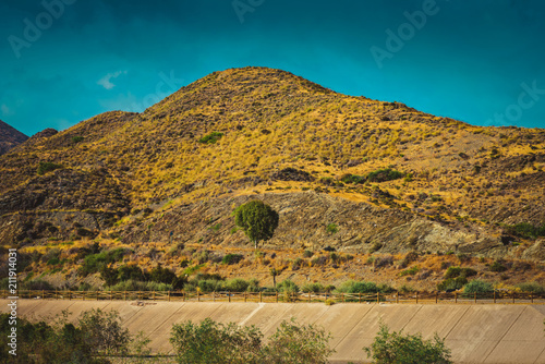 Tuinposter Honing Serene landscape with road in natural park, Almeria