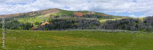 Foto op Aluminium Heuvel Ridge in the Gravelly Range of Montana
