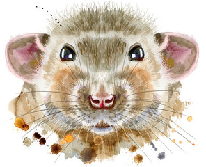 FototapetaWatercolor portrait of rat with splashes
