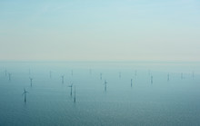 The OWEZ Windfarm Seen In Back...