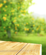 Table Background And Summer Ti...