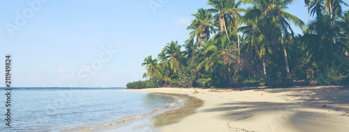Foto Green palm trees on caribbean beach.