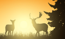 Deer And Hind In A Meadow With A Tree, With The Rising Sun Behind The Background