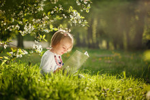 Cute Little Girl Reading A Book In A Park On The Grass In Summer