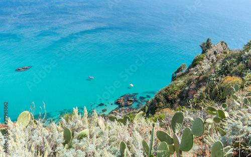 Obraz Mediterranean maquis, plants and sea in Calabria, Italy - fototapety do salonu