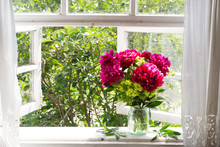 Bouquet Of Peonies On The Windowsill