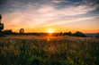 canvas print picture - Beautiful summer sunset with waving wild grass in sunlight, rural meadow or field in countryside