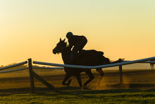 Race Horse Rider Training Trac...